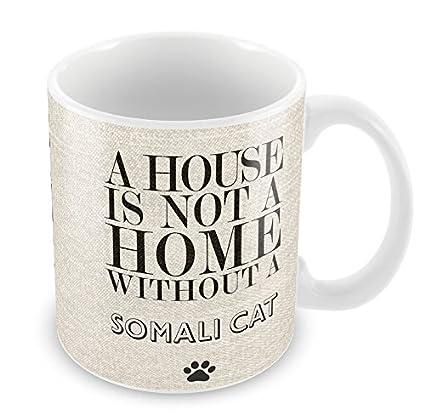 Una casa no es un hogar sin gato somalí taza gatos 195