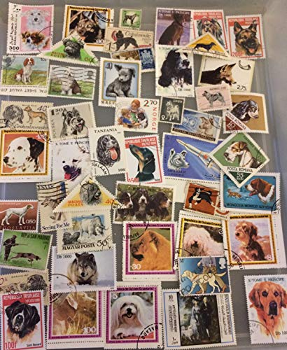 50 Dog postage stamps, worldwide topical stamp collection