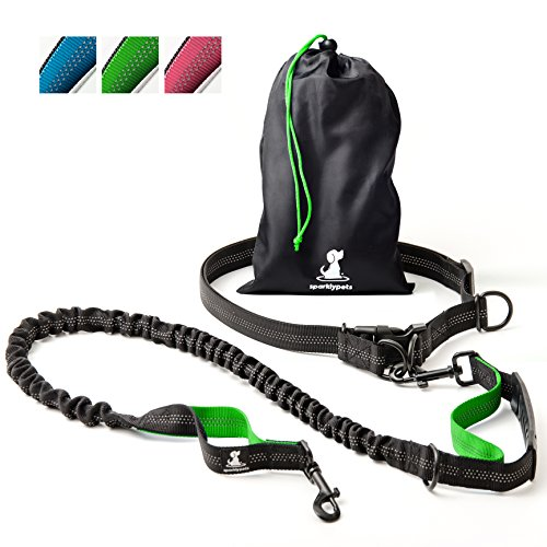 FLASH SALE | Hands-Free Dog Leash for Medium and Large Dogs  Professional Harness with Reflective Stitches for Training, Walking, Jogging and Running Your Pet