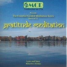 Gratitude Meditation (4 of 12)
