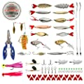 BLISSWILL Fishing Lures Baits Tackle Kit Hard Soft Plastic Fishing Lures Crankbaits Spinnerbaits Jig Head Grub Bait Worms Shrimp with Fishing Tackle Box Fishing Gear Kit