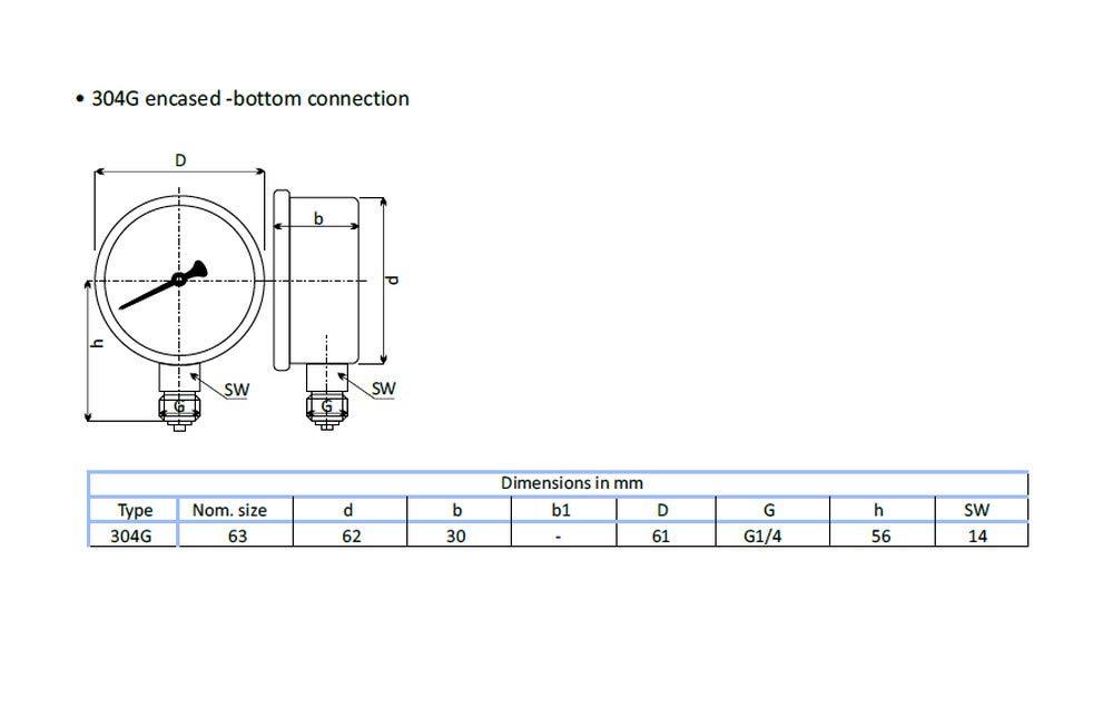 THERMIS Manómetro 304G 1/4 conexión desde abajo (0 - 25 bar) 63 mm: Amazon.es: Bricolaje y herramientas