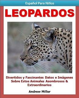 Español Para Niños: Leopardos - Divertidos y Fascinantes Datos e Imágenes Acerca de Estos Animales