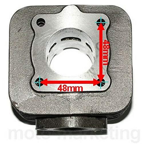 Unbranded 50 Cilindro PISTONE Gabbia A RULLI Set Kit per Piaggio Zip 50 SSL Free 2T
