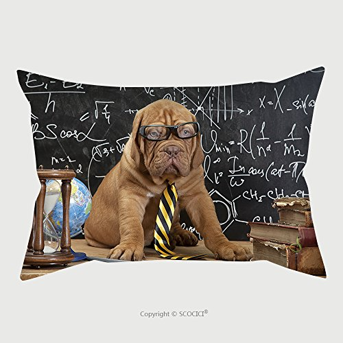Custom Microfiber Pillowcase Protector Young Cute Dog In Front Of Blackboard During A Math Class Dogue De Bordeaux Puppy French Mastiff 186177059 Pillow Case Covers Decorative (Bordeaux Full Futon Set)