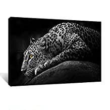 Creative Art - Black and White Tropical Cheetah Animal Wildlife Wall Picture Canvas Art Print,Ready to Hang 24''x36''