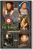 The Tudor Dynasty - Social Studies Classroom Poster