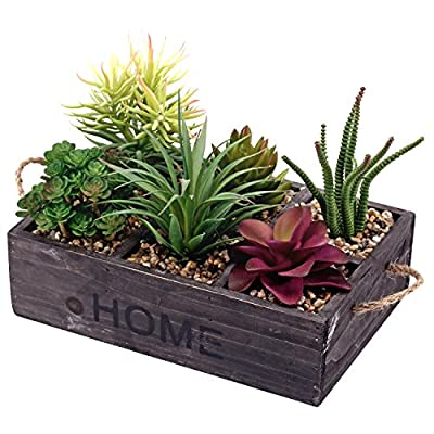 Potted Artificial Succulent Plants in Rustic Wooden 'Home' Planter Box with Rope Handles - Faux multi-colored succulents in rectangular wooden 6 compartmentalized planter box with pebbled potting soil. Features the word 'HOME' stenciled in thick black letters and twisted rope handles for easy transport. Perfect for adding a touch of green to any space without the hassle of maintaining a real plant. - living-room-decor, living-room, home-decor - 51zOekXg7aL. SS400  -