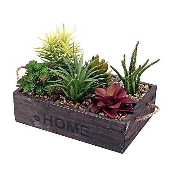 Potted Artificial Succulent Plants in Rustic Wooden 'Home' Planter Box with Rope Handles - Faux multi-colored succulents in rectangular wooden 6 compartmentalized planter box with pebbled potting soil. Features the word 'HOME' stenciled in thick black letters and twisted rope handles for easy transport. Perfect for adding a touch of green to any space without the hassle of maintaining a real plant. - living-room-decor, living-room, home-decor - 51zOekXg7aL. SS570  -
