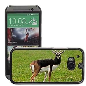 GoGoMobile Slim Protector Hard Shell Cover Case // M00118365 Animal Antelope Blackbuck Brown // HTC One M8