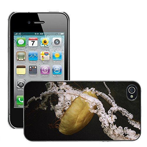 Stampato Modelli Hard plastica Custodie indietro Case Cover pelle protettiva Per // M00421558 Jellyfish Nature Zoo animaux de la // Apple iPhone 4 4S 4G