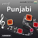 Rhythms Easy Punjabi Audiobook by  EuroTalk Ltd Narrated by Jamie Stuart