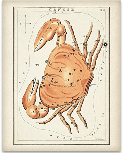 Antique Zodiac Cancer Constellation Plate - 11x14 Unframed Art Print - Great Home Decor or Gift to Astrology (Cancer Zodiac Frame)