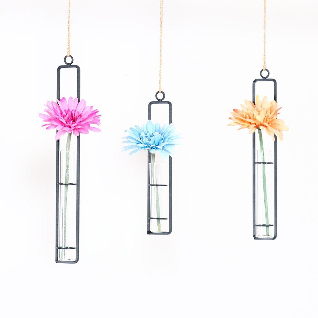 2pcs Transparent Hängevase Glasvase Reagenzglas mit Seil Balkon Wand Diy