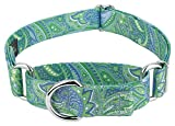 Country Brook Petz - Martingale Dog Collar - Five Paisley Collection (Green Paisley, 1 Inch, Medium) Larger Image