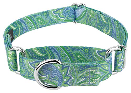 Country Brook Petz - Martingale Dog Collar - Five Paisley Collection (Green Paisley, 1 Inch, Large)