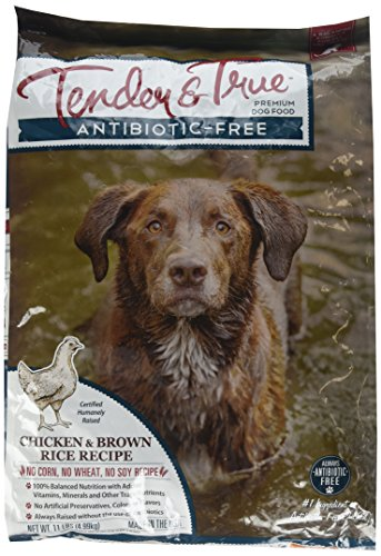 Tender & True 854020 Antibiotic Free Chicken And Brown Rice 11 Lb Dry Dog Food, One Size