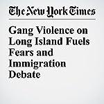 Gang Violence on Long Island Fuels Fears and Immigration Debate | Liz Robbins,Alan Feuer