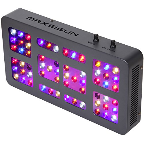 MAXSISUN Dimmable 300W LED Grow Light 12-band Full Spectrum Veg and Bloom Dimmers for Indoor Greenhouse (Model 3 Greenhouse)