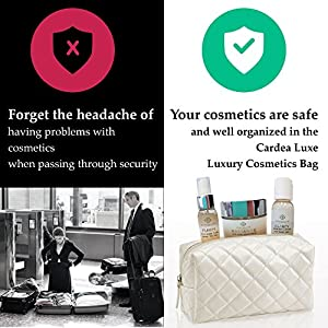 Cosmetic Bag & Travel Size TSA-Approved Bottles of Anti Aging Face Wash, Alcohol Free Toner & Face Moisturizer. Best Skin Care While Travelling - A Great Gift Idea. Re-Usable as a Make Up Bag