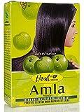 Hesh Amla groseille à maquereau indienne Soins des cheveux Poudre 100g