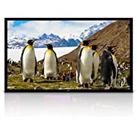 Pyle 110 Matt White Home Theater TV Wall Mounted Fixed Flat Projector Screen - 110 inch 16:9 Full HD Projection - Easy to Set Up for Room Video, Slideshow, Movie / Film Showing - PRJTPFL112