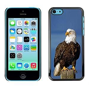 Be Good Phone Accessory // Dura Cáscara cubierta Protectora Caso Carcasa Funda de Protección para Apple Iphone 5C // eagle American symbol national bird