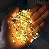 FEELCAT イルミネーションライト5M/10M ストリングライト USB式 フェアリーライト50球/100球 防水 クリスマス 結婚式 パーティー 飾りライト ワイヤーライト (5M/50LED)