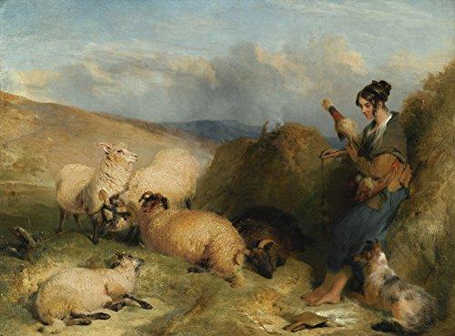 Sir Edwin Henry Landseer - Lassie Herding Sheep, Canvas Art Print by YCC, Size 18x24, Non-Canvas Poster Print