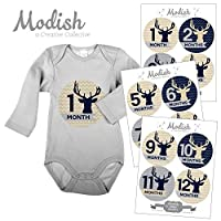 12 Monthly Baby Stickers, Boy, Deer, Antlers, Baby Belly Stickers, Baby Month...