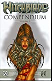 img - for Witchblade Compendium Volume I book / textbook / text book