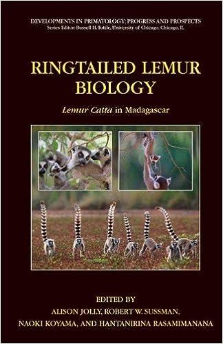 ringtailed lemur biology jolly alison sussman robert w koyama naoki rasamimanana hanta