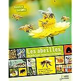 Abeilles , de Précieux Insectes En Danger (les)
