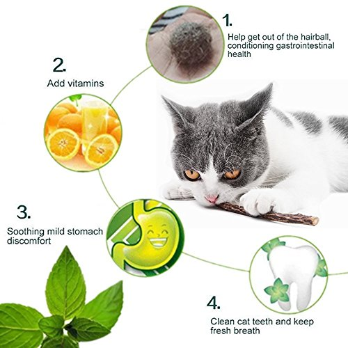 Picture of Catnip Sticks Organic Chew Toys Natural Plant Matatabi Silvervine Chew Sticks Cat Teeth Cleaning Chew Toy for Cat Kitten Kitty (25 Pcs)