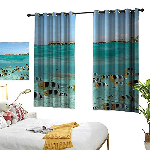 LewisColeridge Window Curtains Ocean,Blacktip Reef Shark Chasing Butterfly Fish Lagoon of Bora Bora Tahiti,Aqua Yellow and Black,Tie Up Window Drapes Living Room 52