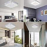 Ceiling Light Flush Mount Ceiling Lamp Audian K9