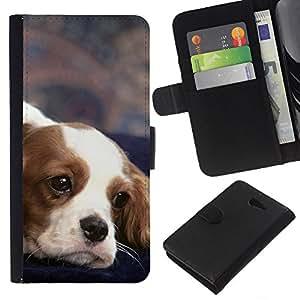 eJoy---La carpeta del tirón la caja de cuero de alta calidad de la PU Caso protector - Sony Xperia M2 - --Cavalier King Charles Spaniel Dog