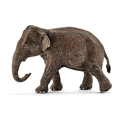Schleich Wild Life Asian Elephant Female Educational Figurine for Kids Ages 3-8: Schleich: Toys & Games