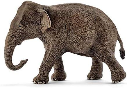 Schleich-14753 Figura de Elefante asiático Hembra, Colección Wild Life, Color marrón, 13 cm (14753)