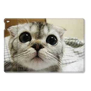 iPad Air 2 Case, Funny Cat Folio Slim Fit Leather Cover with Sleep / Wake Feature for iPad Air 2 / iPad 6