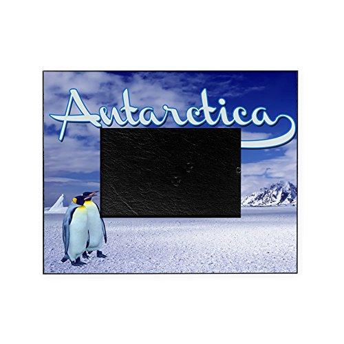 cafepress-antarctica-decorative-8x10-picture-frame
