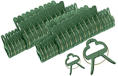 """Campanula Plant (McKay 40 Piece Efficient Gardening Support Stem Spring Clips for Flowers & Plants- 1"""" & 1-1/2"""" Clips Included - Green)"""