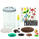 Creativity-for-Kids-Grow-n-Glow-Terrarium