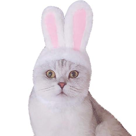 QinMM Orejas de Conejo Forma Diadema Sombrero para Gato y Gatito y Perro pequeño, Gorra