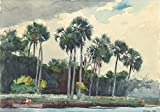 Wall Art Print entitled Red Shirt, Homosassa, Florida By Winslow Homer by Celestial Images   32 x 22