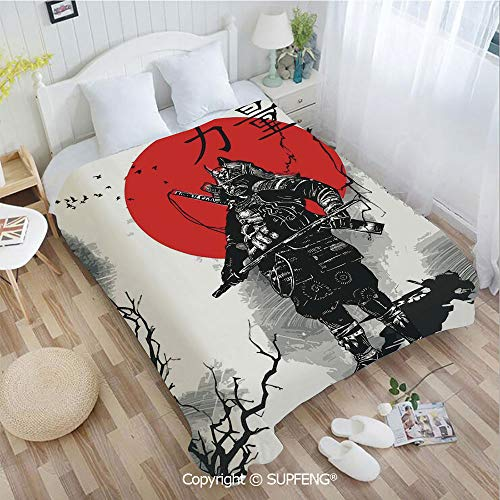 Super Soft Blankets Portrait of Skilled Educated Aristocrat Ancient Knight with Man of War Image(W49.2xL59 inch) Easy Care Machine Wash for Bedroom/Living Room/Camping etc