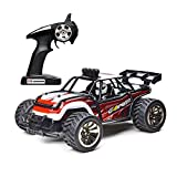 Electric Rc car, Demaxis 2.4 ghz Radio Controlled Truck High Speed 10 MPH 1/16 Scale Remote Control Dune Buggy Truggy for Boys, Adults