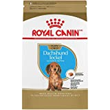 Cheap Royal Canin Breed Health Nutrition Dachshund Puppy Dry Dog Food, 2.5-Pound