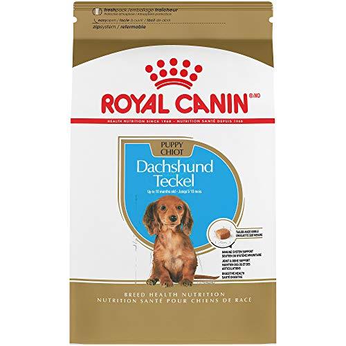alth Nutrition Dachshund Puppy Dry Dog Food, 2.5-Pound ()