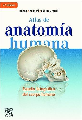 ATLAS DE ANATOMIA HUMANA ROHEN YOKOCHI PDF